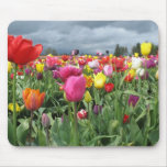 Campo Mousepad de los tulipanes Tapete De Ratón