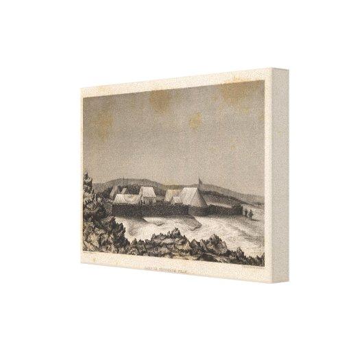 Campo, pico del péndulo, Hawaii Impresión De Lienzo