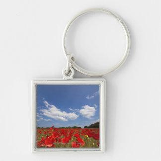 Campo por completo de flores rojas llavero cuadrado plateado