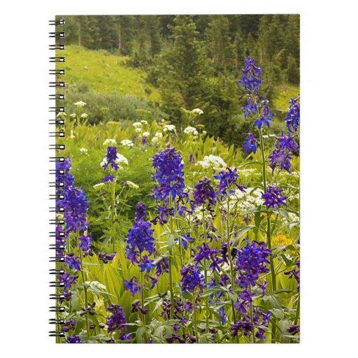 Campo púrpura cuaderno