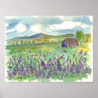 Campo púrpura del Lupine del prado de la acuarela  Póster