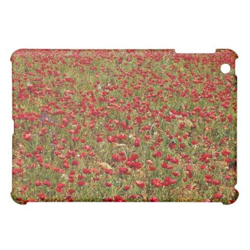Campo rojo de la amapola, flores de Portugal