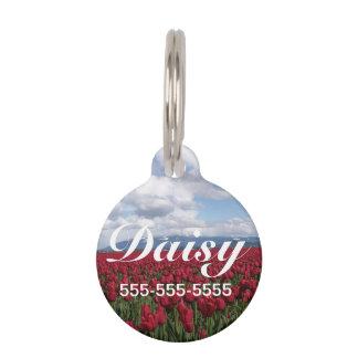 Campo rojo del tulipán placa de mascota