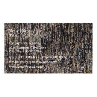 Campo seco de las cañas plantillas de tarjetas personales