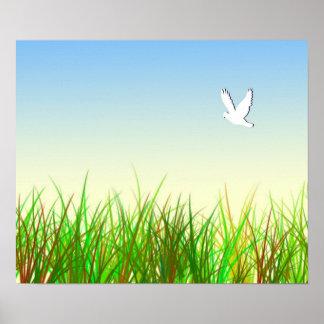 Campo verde con la paloma blanca póster