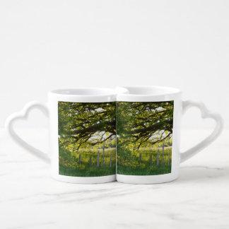 Campo y árboles del Lit de Sun Tazas Para Enamorados