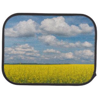 Campo y nubes de Canola Alfombrilla De Auto