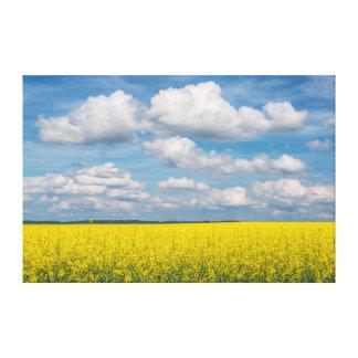 Campo y nubes de Canola Lona Envuelta Para Galerías