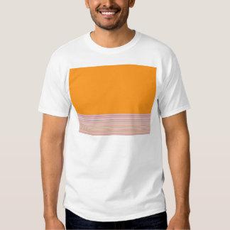 Campo y rayas reconstruidos de color de Roberto S. Camisas