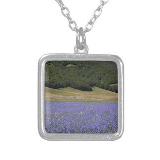Campos coloreados del azul con cornflowers collar plateado