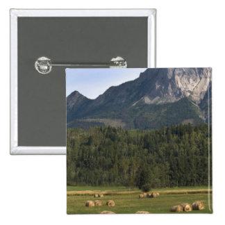 Campos con el heno afianzado, Alberta, Canadá Pin Cuadrado