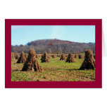 Campos de Amish Tarjeta De Felicitación