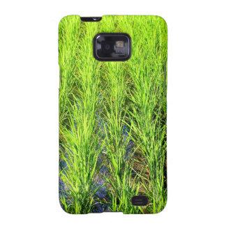 Campos de arroz verdes enormes de arroz en Bali Samsung Galaxy S2 Funda