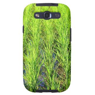 Campos de arroz verdes enormes de arroz en Bali Galaxy S3 Carcasa