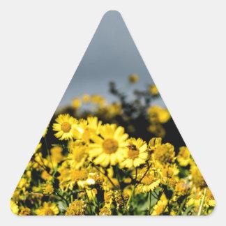 Campos de la margarita pegatina de triangulo