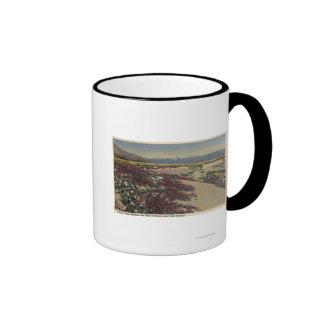 Campos de la sol del desierto y de las verbenas taza de dos colores