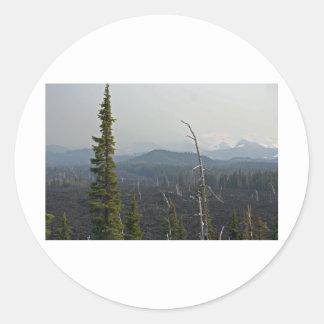 Campos de lava y panorámico en el paso Oregon de Pegatina Redonda