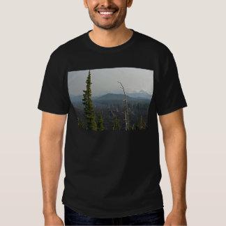 Campos de lava y panorámico en el paso Oregon de Playeras