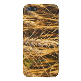 Campos de los oídos del trigo de la foto de la nat iPhone 5 carcasa
