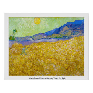 Campos de trigo con el segador en la salida del so posters