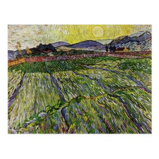 Campos de trigo de Van Gogh Postal