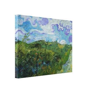 Campos de trigo verdes de Vincent van Gogh Lienzo Envuelto Para Galerias