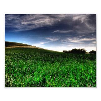 Campos de Wilmington Fotografías