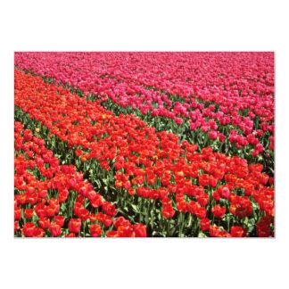 """Campos del bulbo de las flores amarillas de invitación 5"""" x 7"""""""