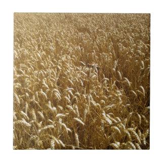 campos del verano azulejo cuadrado pequeño
