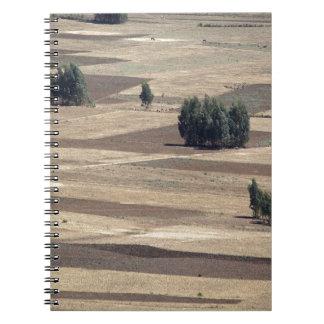 Campos después de la cosecha notebook