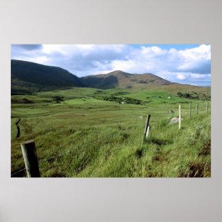 campos verdes de Irlanda Póster