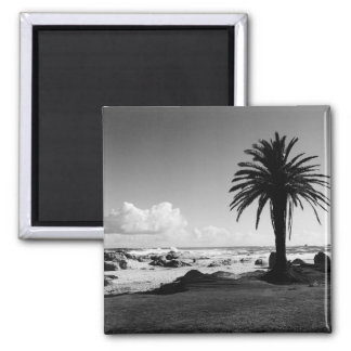 """Camps Bay South Africa"" BW JTG Art Magnet"