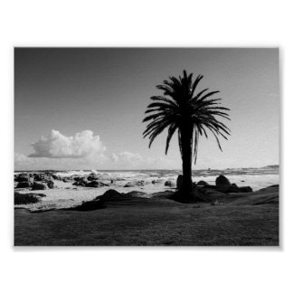 """Camps Bay South Africa"" BW JTG Art Poster"