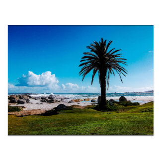 """Camps Bay South Africa"" JTG Art Postcard"