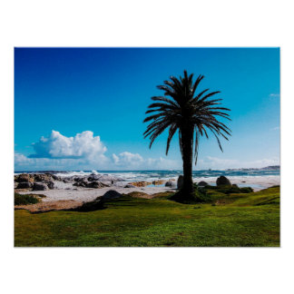"""Camps Bay South Africa"" JTG Art Poster"