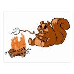 Campsite Beaver Postcard