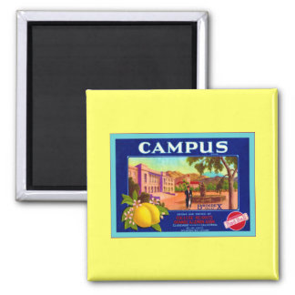 Campus Brand Lemons ~ Vintage Fruit Crate Label 2 Inch Square Magnet