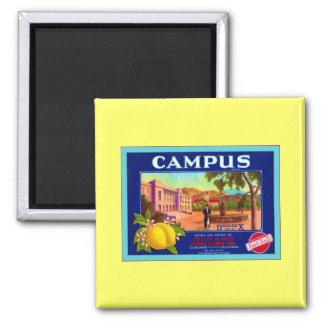 Campus Brand Lemons ~ Vintage Fruit Crate Label Magnet