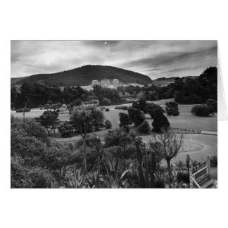 Campus From Golden Gate Park - Greeting Card