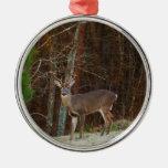 Camuflaje del roble de los ciervos del macho/del adorno redondo plateado