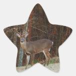 Camuflaje del roble de los ciervos del macho/del pegatina en forma de estrella