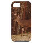 Camuflaje del roble rojo de los ciervos del macho/ iPhone 5 cárcasa