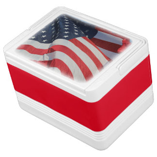 Can Cooler/American Flag Drink Cooler