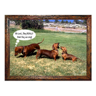 Can Doxies Sing? Maybe not............ Postcard