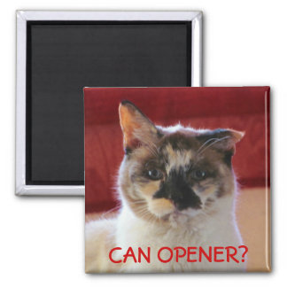 Can Hear Opener? 2 Inch Square Magnet