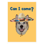 Can I Come Dog Large Business Cards (Pack Of 100)