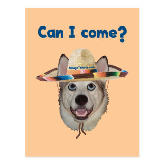 Can I Come Dog Postcard