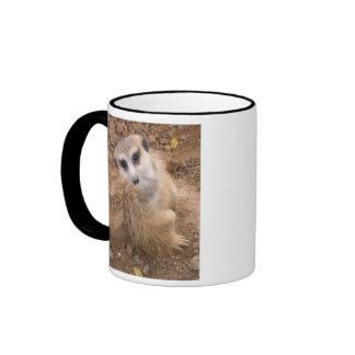 Can I Help You?? Mugs