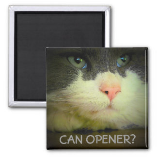 Can Opener? Magnet