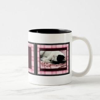 Can Sleep Anywhere Mug